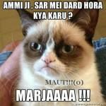 Ammi Sar Dard Marjaaa Funny Meme