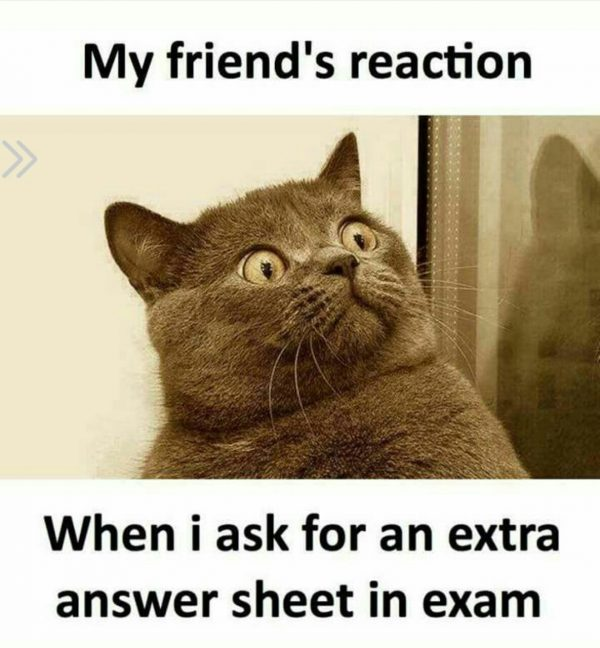 Friends Reaction in Exam Funny Meme