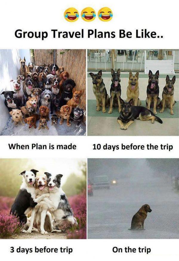 Group Travel Plans Be Like Funny Meme
