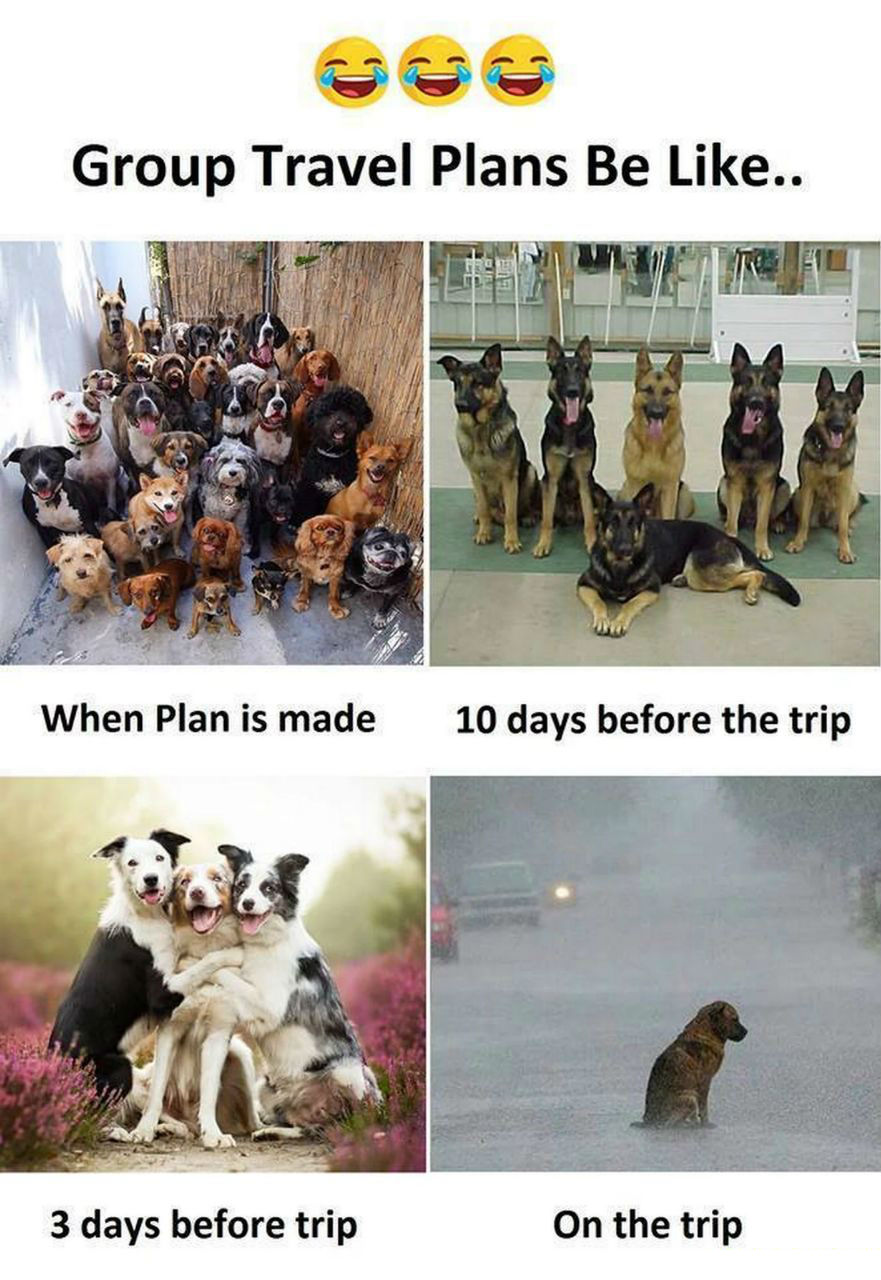 Group Travel Plans Be Like Funny Meme