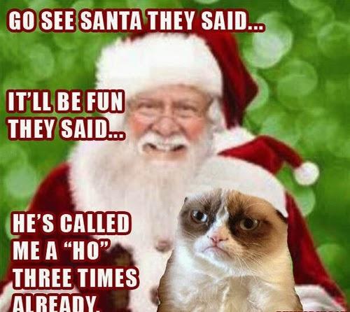 Santa Grumpy Cat Christmas Funny Meme