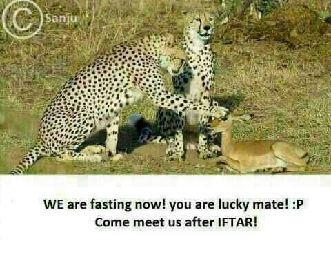 We are Fasting now Funny Meme